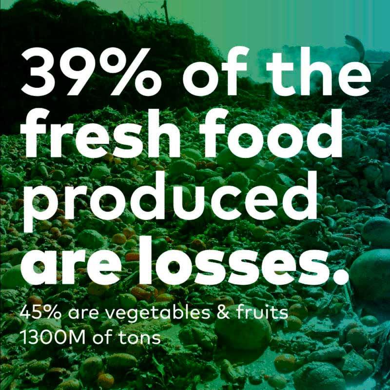 campaña alimentos perdidos agrosingularity drbrandfactory.es